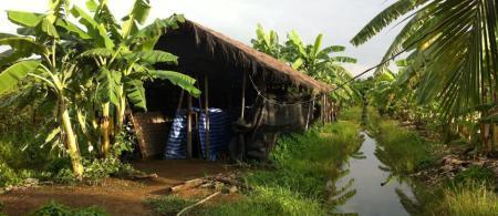 CBA Climate-Smart Farming (Photo: E. Parry, 2015)