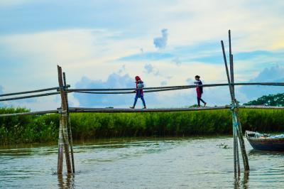 Children crossing bamboo bridge, Bangladesh